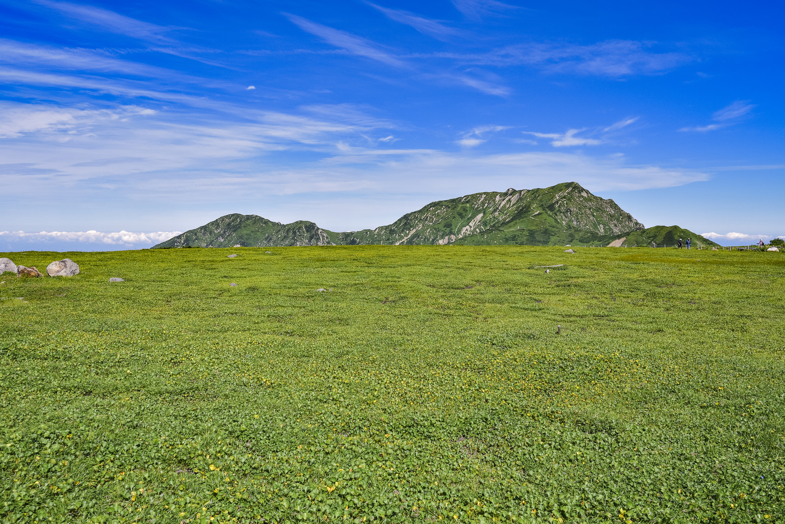 草原と山々の写真