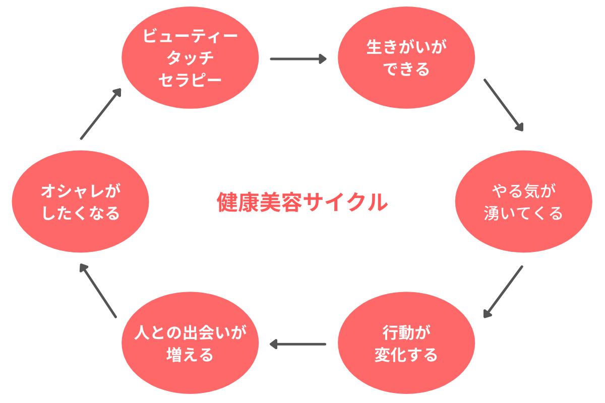 健康美容サイクルの概念図